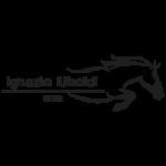 ignazio uboldi rider logo cliente wide
