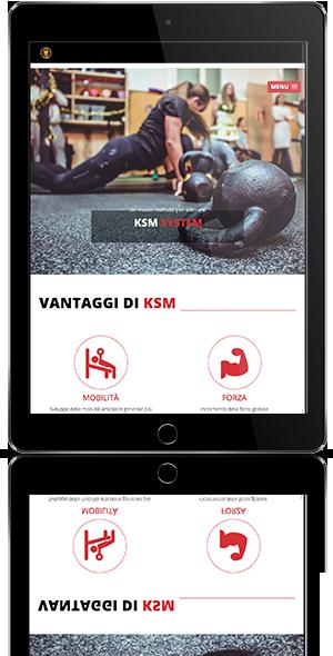 KSM system